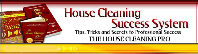 House Cleaning Business Image